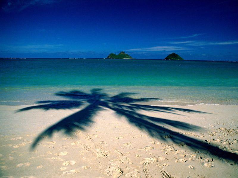Hawaii-Beach-Vacation-365-715461