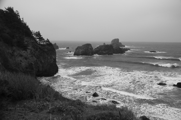 Ecola state park16