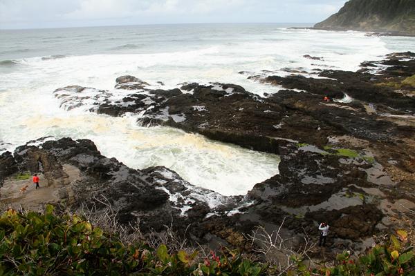 Cape perpetua012
