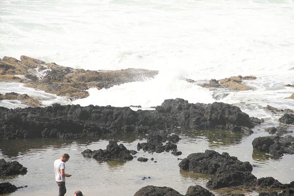 Cape perpetua018