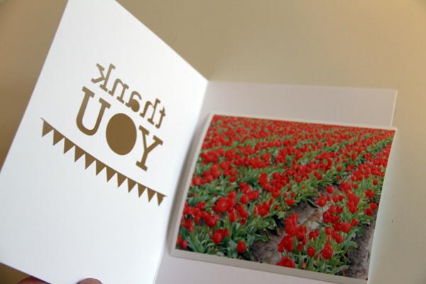 Thank u w.pic cutout card006