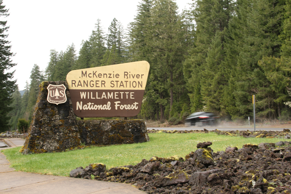 Willamette_natl_forest.001