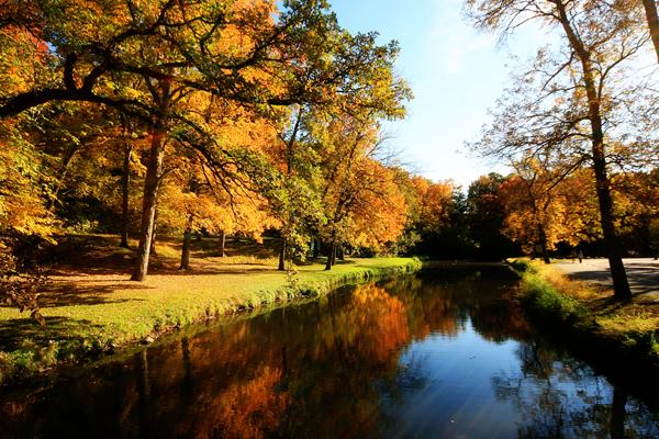 Fall-2012