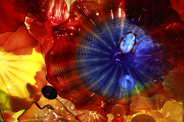Chihuly14