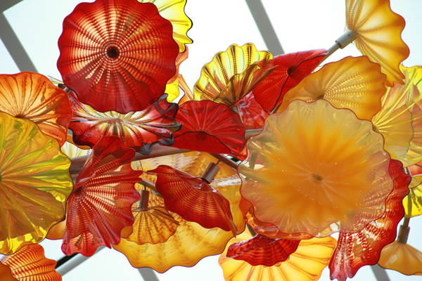 Chihuly45