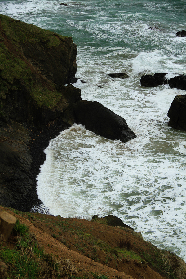 Ecola state park5