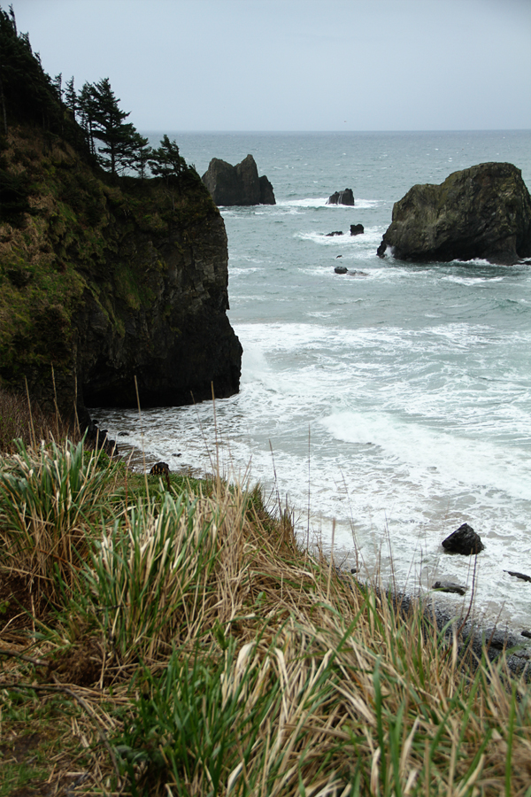 Ecola state park8