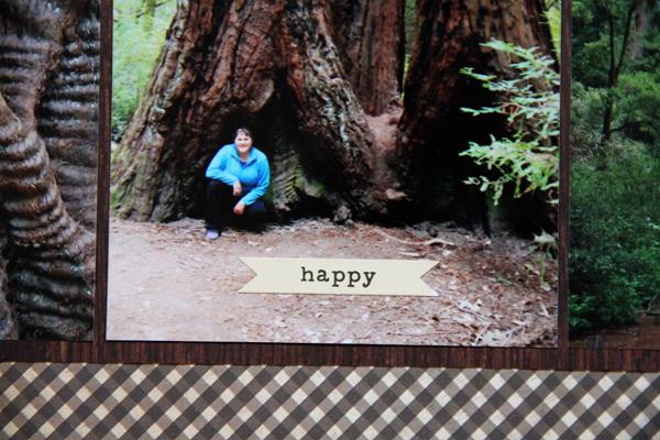 Big basin redwoods010