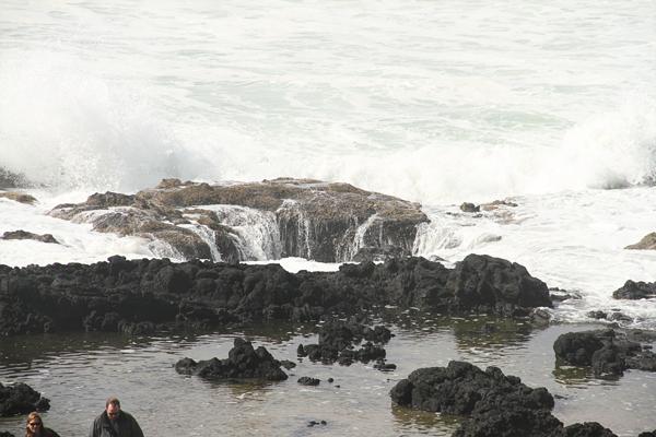 Cape perpetua017