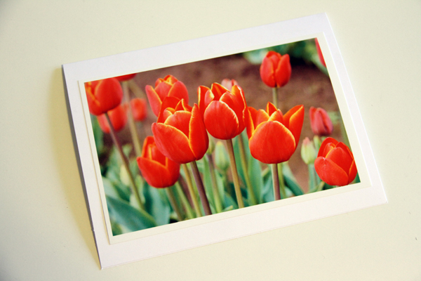 Thank u w.pic cutout card015