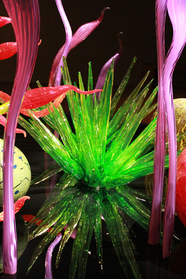 Chihuly19