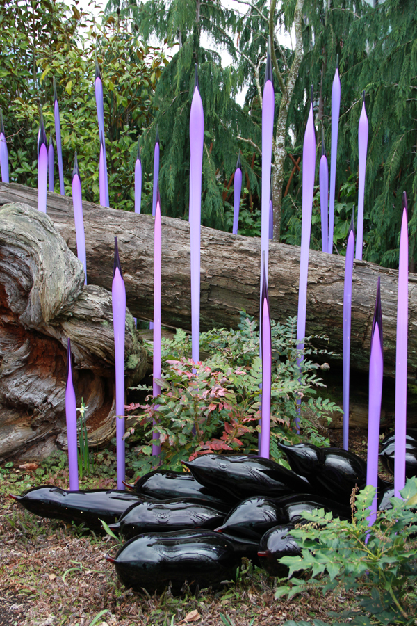 Chihuly52