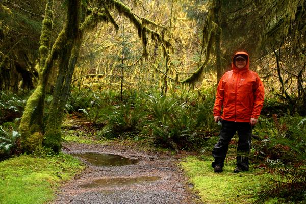 Spruce trail6