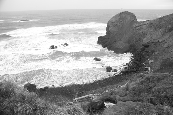 Ecola state park17
