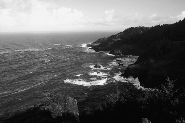Cape foulweather014jpg
