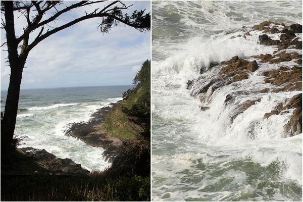 Cape perpetua021