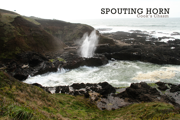Spouting-horn