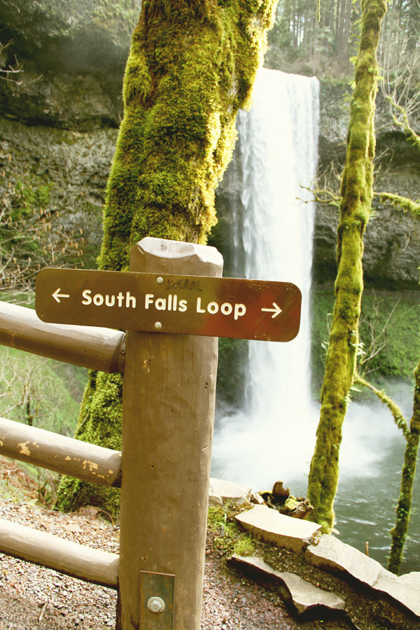 Silver falls state park.031