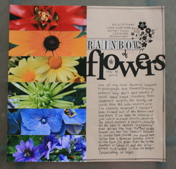 Rainbow20of20flowers