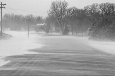 12908_butt_fin_cold_blizzard