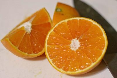51308_suicculent_florida_oranges